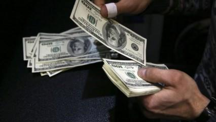 Dolar Trump'ı takmadı! Dolarda dikkat çeken hareketlilik
