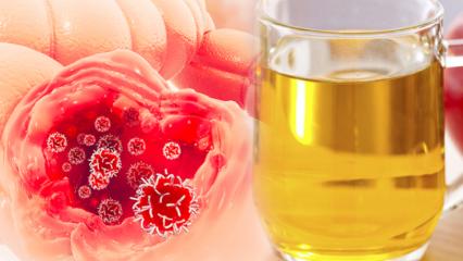 Kolon (kalın bağırsak) kanserinin belirtileri nelerdir? Kolon temizliği nasıl yapılır?