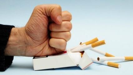 Sigarayı bırakmanın vücuda etkileri! Sigarayı bırakınca vücutta neler oluyor?