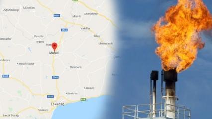 Tekirdağ Muratlı ilçesi nerede? Doğal gaz bulunan yerin harika üzerindeki konumu