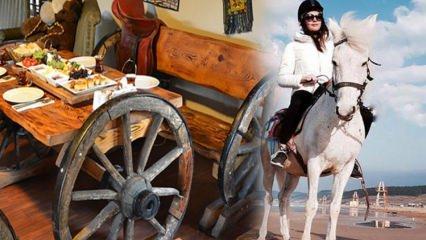 İstanbul'da nerede ata binilir? Ata bineceğiniz at çiftliği rotaları