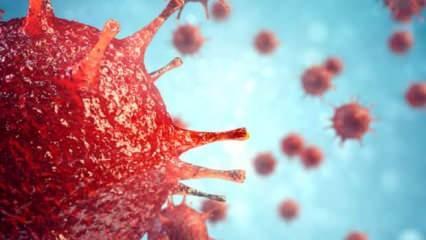 Korona virüsü nedir? Nasıl bulaşır?
