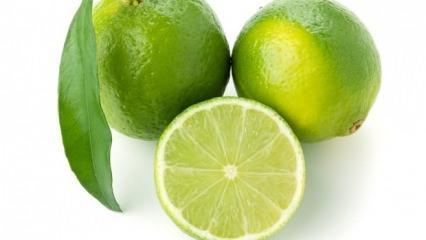 Yeşil limonun faydaları nelerdir? Yeşil limon hangi hastalıklara iyi gelir?