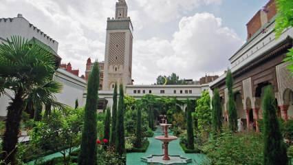 Avrupa'nın camileri ve İslami eserleri: Muhafazakar aileler için gezi rotaları