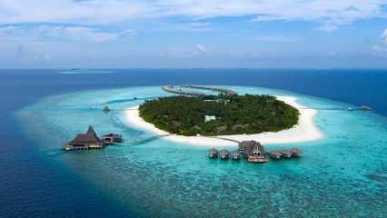 Vaadhoo İsland nerede? Vaadhoo Adası denizinin özelliği