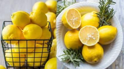 5 günde 3 kilo verdiren Limon diyeti nasıl uygulanır?