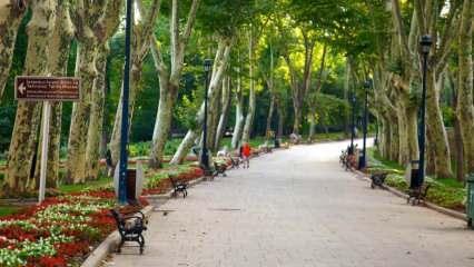 Hafta sonu İstanbul'da gezilecek park ve bahçe rotaları
