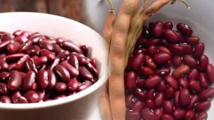 Meksika fasulyesinin faydaları nelerdir? Meksika fasulyesi nasıl tüketilir?