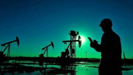 Rusya'dan petrol fiyatı açıklaması