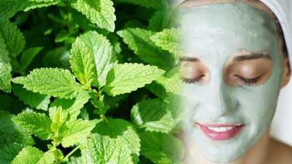 Nanenin cilde faydaları nelerdir? Nane cilde nasıl uygulanır? Cildi yenileyen nane maskesi