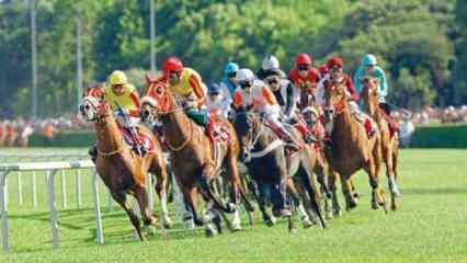 Bakan açıkladı! 'At yarışları ertelendi'