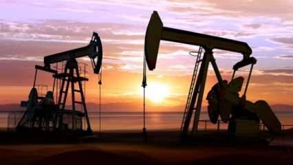 Bir litre ham petrol litrelik şişe sudan daha ucuz