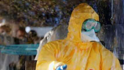 Bomba iddia! Koronavirüsü Avrupa'ya oradan yayıldı