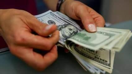 Bakanlık açıkladı! Artık sözleşmede dolar kullanılmayacak