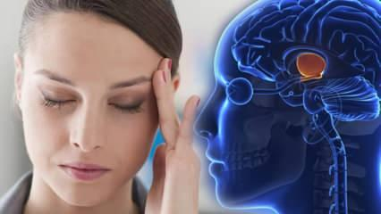 Stres hormonu (Kortizol) nedir? Kortizol ne işe yarar? Kortizol yükselirse ne olur?