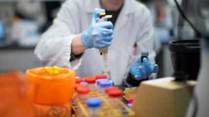 15 Türk bilim adamı harekete geçti! 15 ülke sıraya girdi, taleplere yetişemiyorlar...
