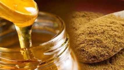 Kimyonun faydaları ve besin değerleri nelerdir? Kimyon hangi hastalıklara iyi gelir?
