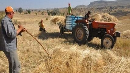 2020 Mazot ve gübre desteği ne kadar? Çiftçi destek ödemeleri ne zaman yapılacak?