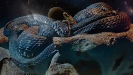 Rüyada kara yılan görmek nasıl yorumlanır? Rüyada evin içinde yılan görmek neye işaret?