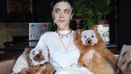 Fulya Zenginer'in köpekleriyle güldüren maskeli paylaşımı!