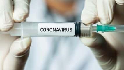 Koronavirüste rekor ölü: ABD resmen felç!