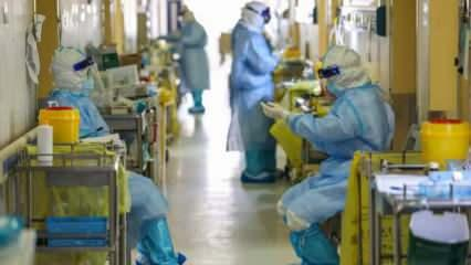 Skandal! Çin'den gelen kitlerde virüs tespit edildi