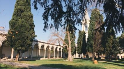 Topkapı Sarayı'nın tarihi ve bilinmeyenleri