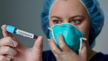 Türk bilim insanı başardı! Dev adım! Virüs izole edildi