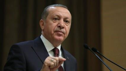 Başkan Erdoğan: Kendi ülkelerine karşı adeta savaş açtılar