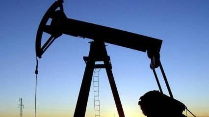 Petrol fiyatları 20 yılın en düşük seviyesinde