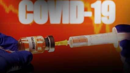 Son Dakika: Dünya Sağlık Örgütü'nden Türkiye açıklaması! Koronavirüs aşısı için de tarih verdi