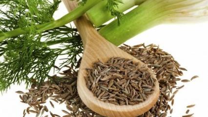 İftar sonrası mide şişkinliğine iyi gelen rezene çayı nasıl yapılır? Tüm faydaları...