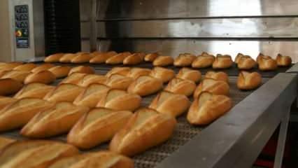 Uzmanlar uyardı: Ekmekleri 90 derecelik fırında 10 dakika bekletin