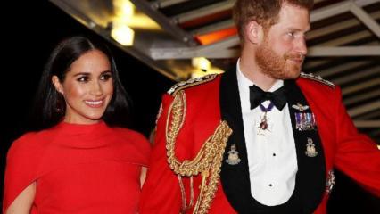 Prens Harry, Prens Charles'tan yardım istedi!