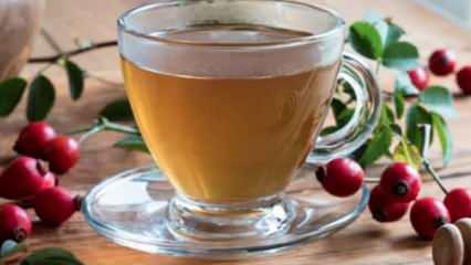 Kiraz sapının faydaları neler? Kilo verdiren kiraz sapı çayı nasıl demlenir?