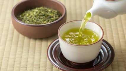 Yeşil çayın faydaları nelerdir? Yeşil çay hangi hastalıklara iyi gelmektedir?