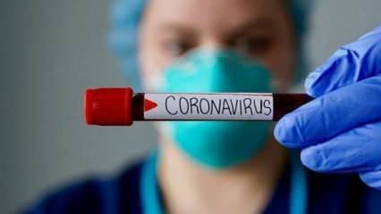 Bilim insanından koronavirüs itirafı: Tamamen yok etmek imkansız