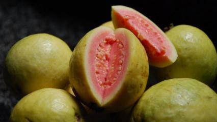 Guava meyvesi nedir? Guava meyvesi nasıl yenir ve faydaları nelerdir?