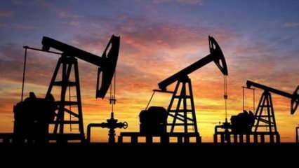Libya'dan petrol atağı! Resmen duyurdular