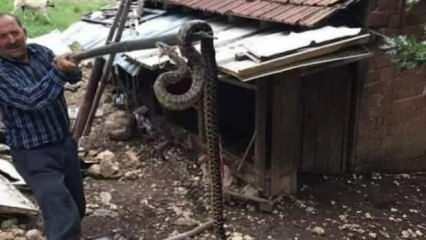 Trabzon'da öğretmeni öldürmüştü! Tam 2,5 metre...
