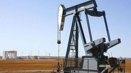Katar Enerji Bakanı: Petrol fiyat savaşı büyük hata