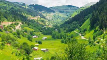 Rüyada memlekete gitmek nasıl yorumlanır? Rüyada memleketi görmenin detaylı tabirleri