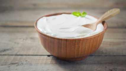 Yoğurt hangi hastalıklara iyi gelir? Probiyotik kaynağı ev yoğurdunun faydaları