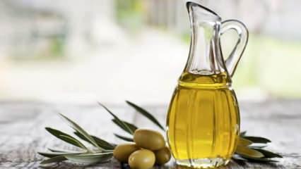 Zeytin ve zeytinyağının faydaları nelerdir? Zeytinyağı saç ve cilde nasıl kullanılır?