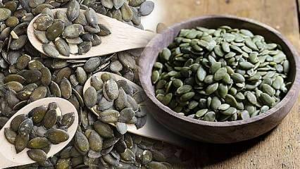 Kabak Çekirdeği yemenin faydaları | Çiğ kabak çekirdeğinin kanseri durdurduğu kanıtlandı!