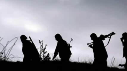 Sınırda tehlikeli hamle! Metina Dağı'na konuşlandılar