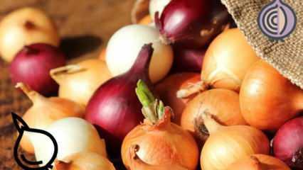 Hangi soğan çeşidi hangi yemekte kullanılmalı ? Sarı, kırmızı ve beyaz soğan arasındaki farklar
