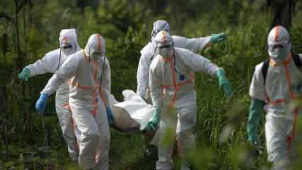 1 Ağustos dünyada koronavirüs tablosu