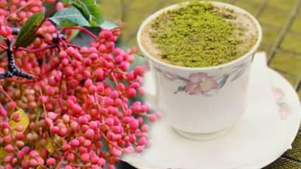 Menengiç (Çitlembik) tohumunun faydaları nelerdir? Menengiç kahvesi ne işe yarar?