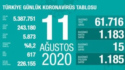Son dakika haberi: 11 Ağustos koronavirüs tablosu! Vaka, ölü sayısı ve son durum açıklandı